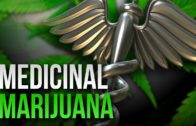 Medical Marijuana in Chicago with Anna DeShawn & the QCrew
